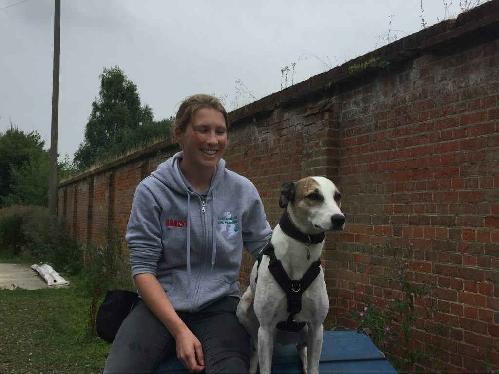 A dog and woman sit on a piece of equipment with a brick wall behind them